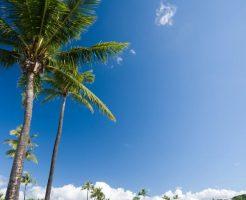 ハワイイメージ画像